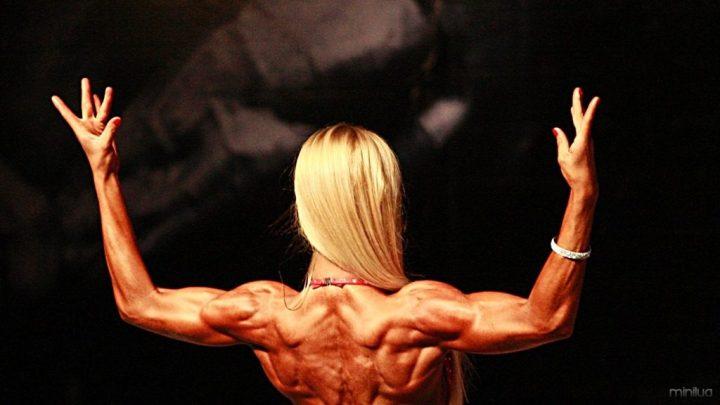 musculatura