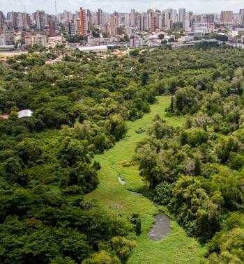 13 de Abril - Parque Ecológico do Cocó, considerado um dos maiores parques urbanos da América Latina, é a mais importante área verde da cidade de Fortaleza.