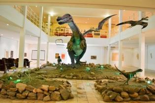 3 de Agosto – Pterossauros — Araripe (CE) — 142 Anos em 2017.