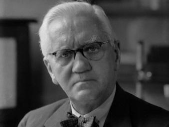 6 de Agosto – Alexander Fleming - 1881 – 136 Anos em 2017 - Acontecimentos do Dia - Foto 3.