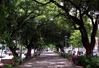 16 de Agosto – Canteiro central da avenida Frei Serafim — Teresina (PI) — 165 Anos em 2017.