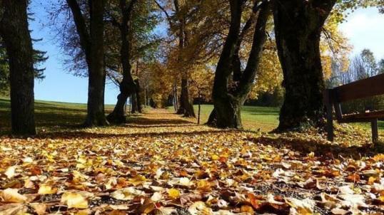 20 de Março - Outono, no hemisfério Sul