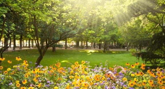 20 de Março - Primavera no hemisfério Norte