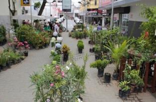 7 de Setembro – Comércio no centro da cidade — Teófilo Otoni (MG) — 164 Anos em 2017.