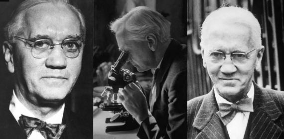 6 de Agosto – Alexander Fleming - 1881 – 136 Anos em 2017 - Acontecimentos do Dia - Foto 11.