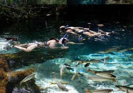 1 de Maio - Nobres (MT) - Aquário Encantado, mergulho, peixes.