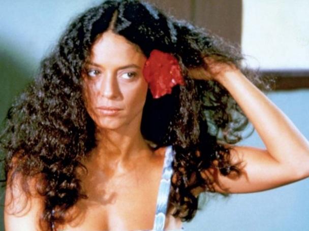 8 de junho - Sônia Braga - atriz brasileira