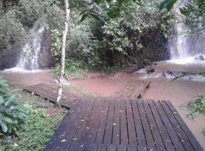 24 de Julho - Horto Florestal — Itatinga (SP) — 121 Anos em 2017.