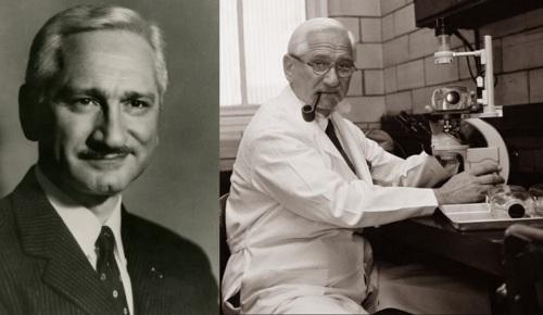 26 de Agosto — Albert Sabin - 1906 – 111 Anos em 2017 - Acontecimentos do Dia - Foto 18.