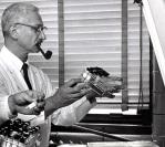 26 de Agosto — Albert Sabin - 1906 – 111 Anos em 2017 - Acontecimentos do Dia - Foto 7.