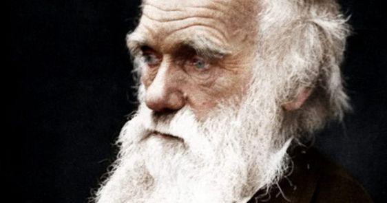 12-de-fevereiro-charles-darwin-biologo-evolucionista-naturalista-britanico